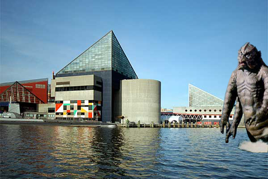 The National Aquarium's 30th anniversary – celebration suggestions