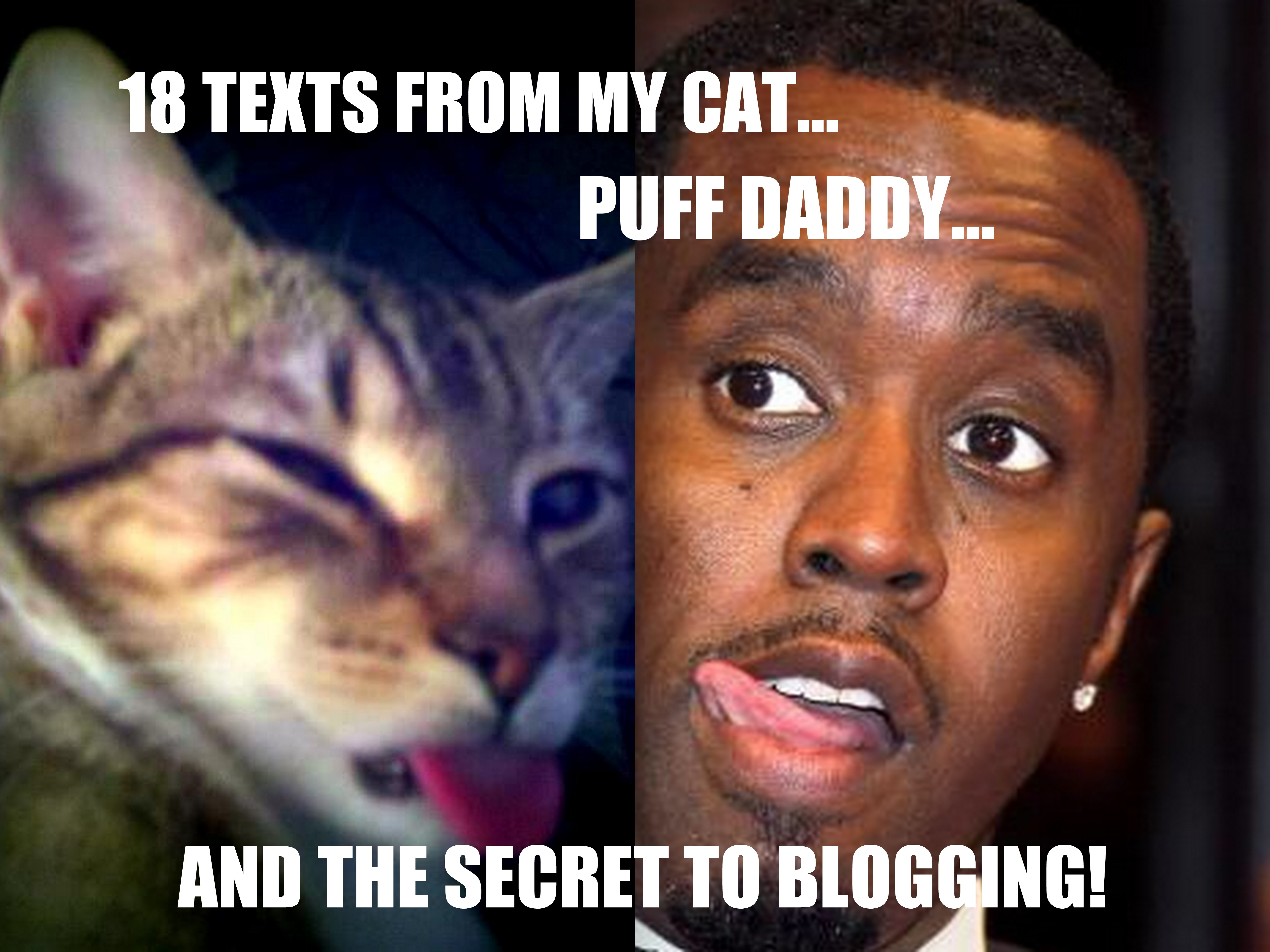 18 Texts From My Cat, Puff Daddy, and the Secret to Blogging!